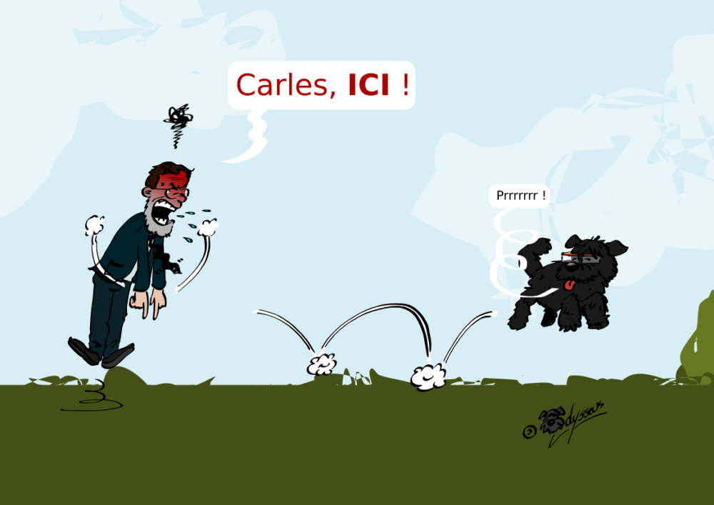 Carles, ICI !