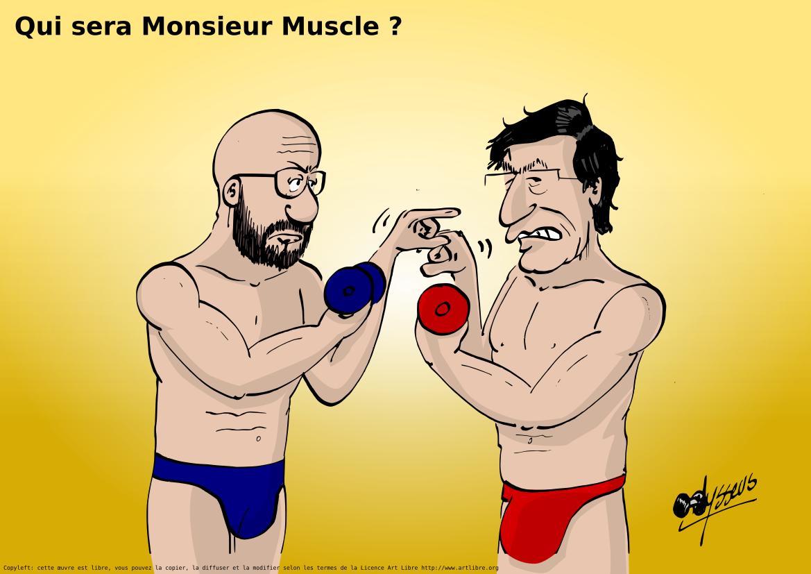 Qui sera Monsieur Muscle ?
